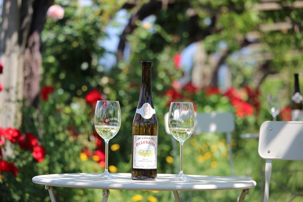 Wine bottle Granbazan