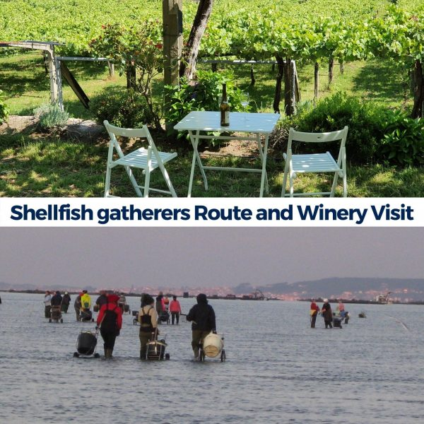 Experiences in Granbazan. Shellfishers