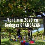 Resumen vendimia 2020 en Bodegas GRANBAZÁN