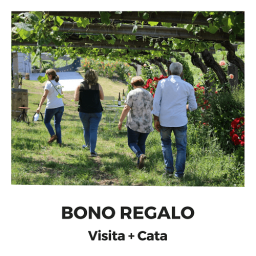 Bono Regalo Visita + Cata